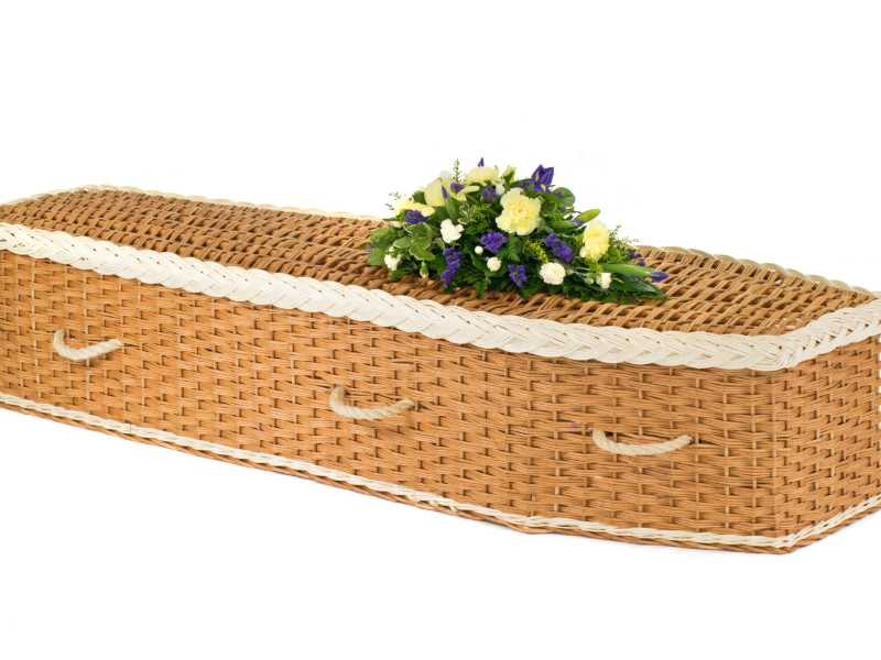English Willow Eco2 White & Natural Purple Flowers
