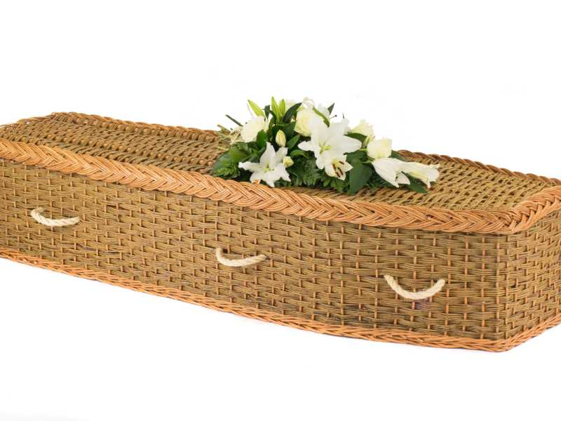 English Willow Eco2 Green & Natural White Flowers
